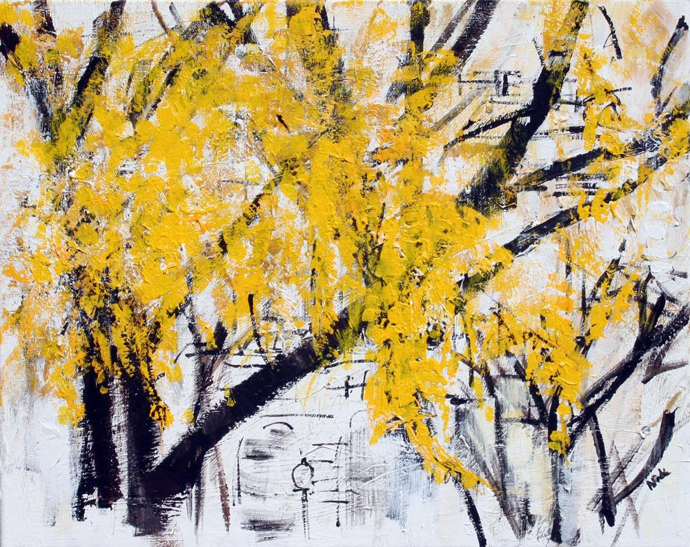 2014-35 Yellow tree at the Capitol Building in Washington, D.C. by Alyse Radenovic