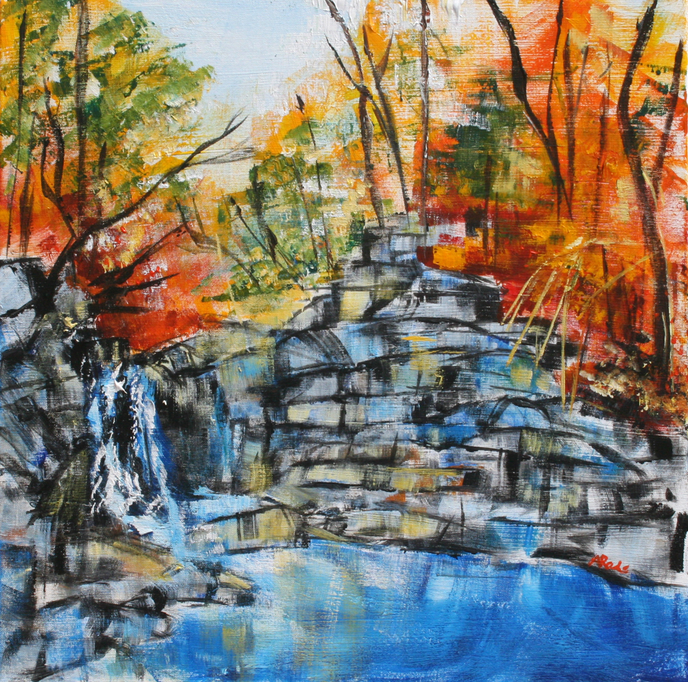 Scott's Run Waterfall by Alyse Radenovic